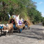 By ox cart to Popoyuapa